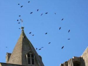 Crowland Abbey 13